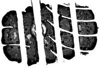 Тест драйв покрышек для летнего сезона: шумность расход топлива Goodyear Eagle F1 Asymmetric 2 225/45/17 Car and Driver 2012
