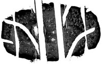 Сравнительные характеристики шин для лета: разгон торможение Dunlop Direzza Sport Z1 Star Spec 225/45 R17 Car and Driver 2012